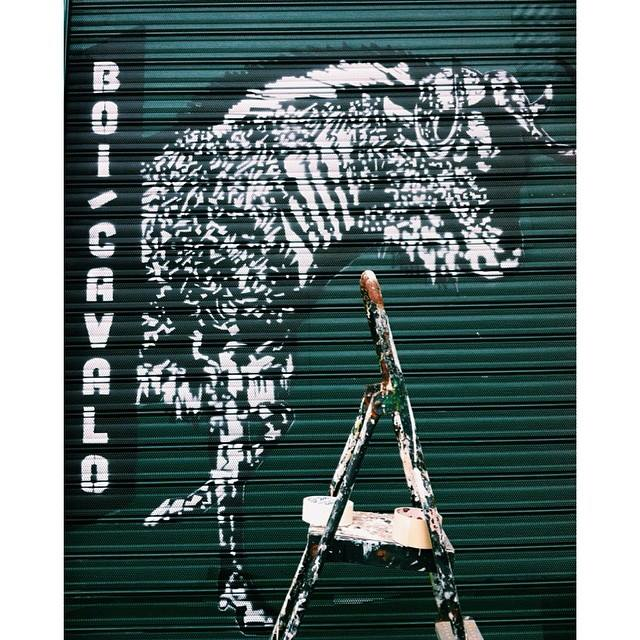 Boi Cavalo Alfama