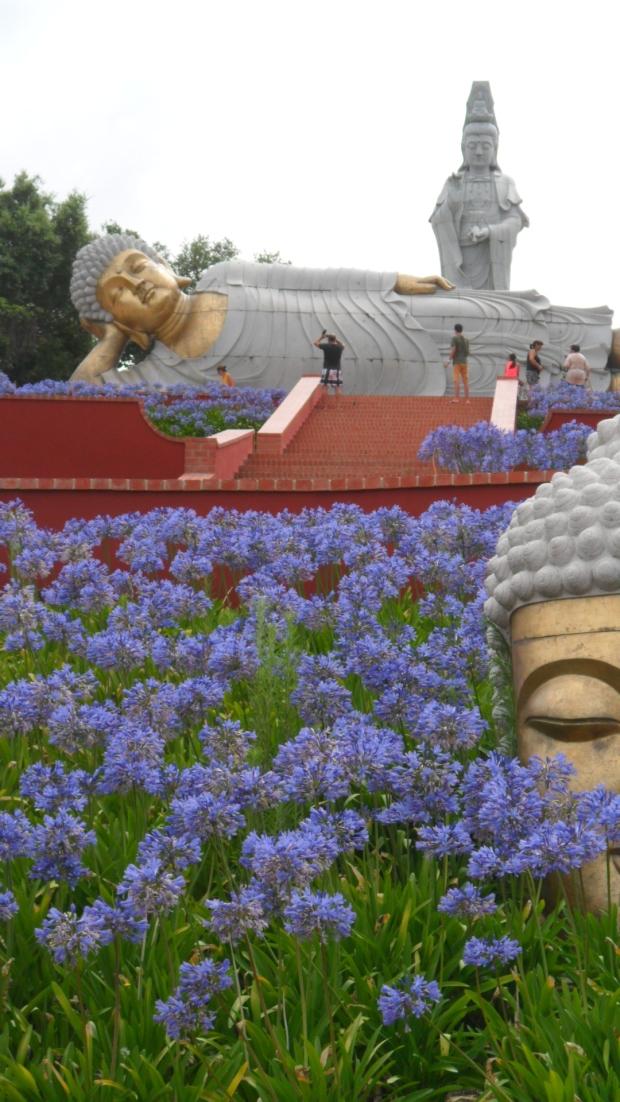 Buddha Eden Garden (6)