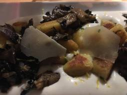 santa-clara-dos-cogumelos-12